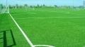 足球場五人制環保草坪和