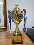 西安高端奖杯设计,金属材质奖杯定制 水晶奖杯现货印