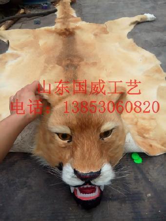影视动物道具仿真狮子模型