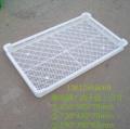 貴陽喬豐 冷凍盤 廠家直銷 周轉盤 塑料食品單凍器
