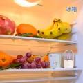 新加坡紫外線殺菌 衣柜放置臭氧除味消毒機 家用智能