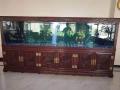 訂制大中小型魚缸