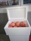 大蒜、水果、凍品等食品泡沫周轉箱銷售批發 全國發貨