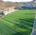 足球場五人制塑料草皮和