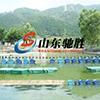 山東馳勝公園大型水上拓展設備定制水上游樂設施