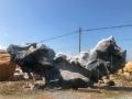 供應超大型8米長太湖石、造景石、園林石