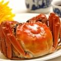 菜鮮生牌陽澄湖大閘蟹