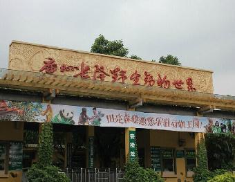 于动物园门口集中,乘坐大巴前往广州南站,乘坐高铁返回南宁(车次待定)