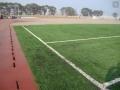 足球場沖砂人工草坪是錢一平方