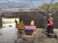 深圳部門活動聚會龍崗周邊有了新的好去處