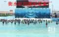 海啸池设备 海啸池设备报价 游泳池海啸池设备厂家