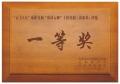 長沙保險公司獎牌中國人壽木牌中國平安年會活動獎牌