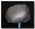去哪分析橄欖隕石