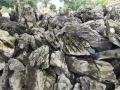 英石园林假山、英石假山、英石文化、英石盆景