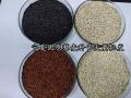 宁夏藜麦种子基地种植 白藜麦种子原粮种出芽率高