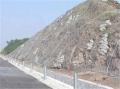 新疆邊坡防護網規格