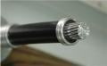 JL LB1A鋼芯鋁絞線生產廠家