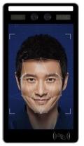8寸高清寬動態雙目活體檢測人臉識別門禁考勤一體機