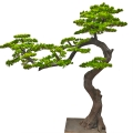 仿真松樹盆景假迎客松樹 盆栽造型裝飾來圖定做造型羅