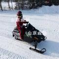兒童雪地摩托車 成人雪地摩托車 冰雪樂園雪地摩托車