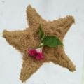 石英砂在人造草坪中的使用價值