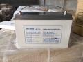 泰興市理士LEOCH蓄電池2V 12V電池價格