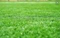 足球場小型仿真草皮那有賣
