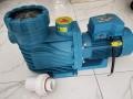 吸污机水泵温泉泵浴池泵循环泵泳池水泵