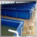 廠家直銷帆布水池,小龍蝦養殖水池批發,蓄水池定做