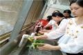 深圳寶安周邊農家樂燒烤野炊好去處