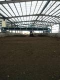 邯郸绿化羊粪货源充足直供绿化羊粪库存量大