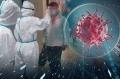 諾福牌殺菌劑 空間殺孢子劑