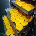 空气能干燥设备热泵芒果烘干机应用广泛