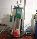 保定0.1噸燃油氣蒸汽多用發生器供應
