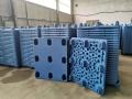 山東辰鳴塑業塑料托盤廠家叉車托盤貨架托盤廠家
