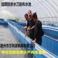 養殖養蝦帆布水池 加厚刀刮布帆布水池養魚 篷布小龍