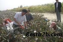 北京 益阳/小型拾棉花机我爱发明摘棉花机我爱发明棉花收割机