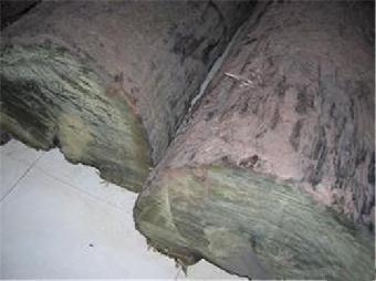 """如今此款一吨""""金丝楠木原木""""是最珍贵原木,其他木质难以媲美,不愧为"""