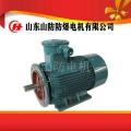 山防电动机供应YBK2-315L2-2防爆电机价格