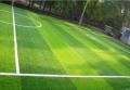 五人制笼式足球场人工草皮尺寸