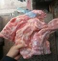 供應 進口豬頸骨 西班牙1184頸骨 冷凍頸骨