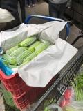 蔬菜墊箱吸水紙 蔬菜隔層吸水紙