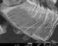 MAX相陶瓷材料 鈦碳化鋁 鈦鋁碳 Ti3AlC2