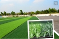 足球場標準PE草坪的優點