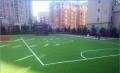 足球場賽爾隆專用草坪哪兒買