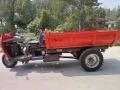 柴油三輪車工程礦用自卸燃農用建筑五征時風同款翻斗車
