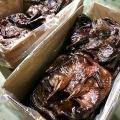 广州酱鸭脖酱板鱼批发湖南工厂直接发货