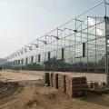 玻璃溫室大棚工程 智能玻璃溫室 農業溫室