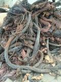 辛集钛管回收一吨多少钱