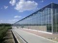 山東玻璃溫室大棚